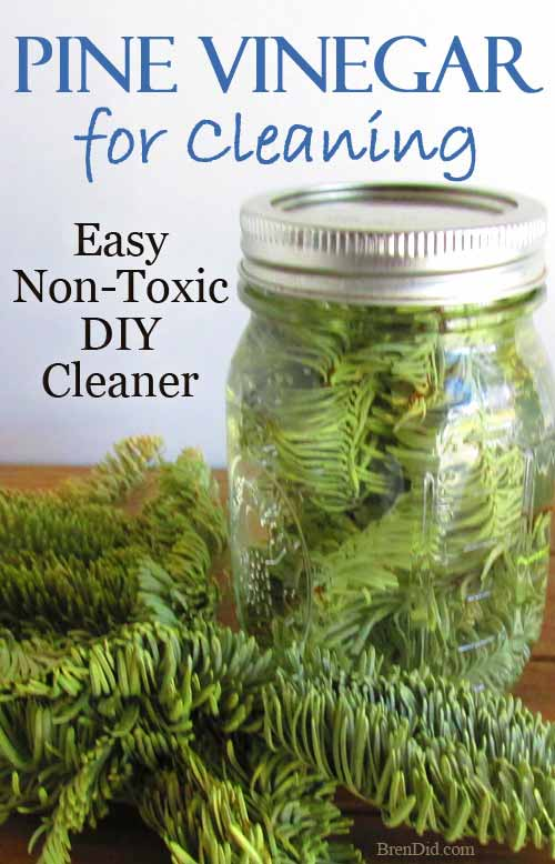 How To Make Evergreen Scented Vinegar For Cleaning Shtf