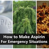 How to Make Aspirin