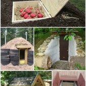 17 DIY Root Cellars For The Homestead