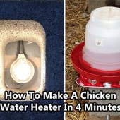 How To Make A Chicken Water Heater In 4 Minutes
