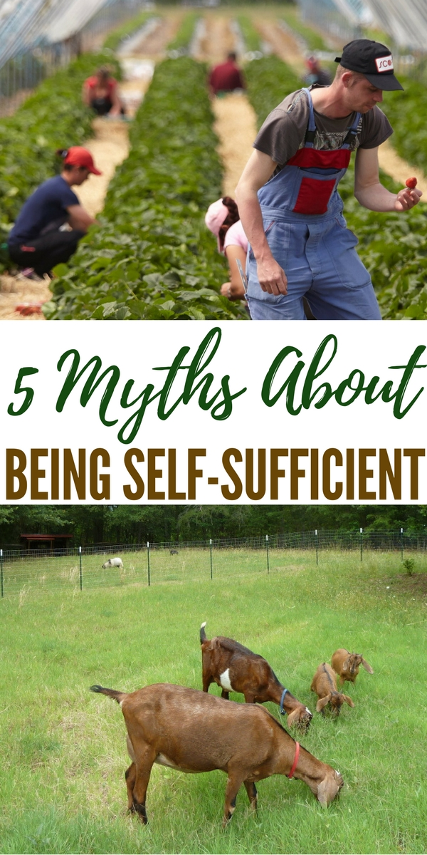 5 Myths About Being Self-Sufficient - Most people tend to think of self sufficiency as being wholly reliant upon oneself, living out in the woods without any outside influence. Regardless of how you define it, there are certain aspects of being self sufficient that are simply untrue.