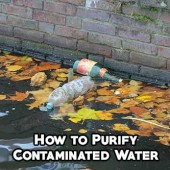 How to Purify Contaminated Water