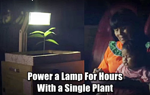 Power a Lamp For Hours With a Single Lamp