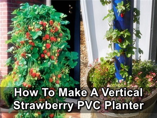 How To Make A Vertical Strawberry PVC Planter