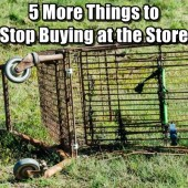 5 More Things To Stop Buying at the Store