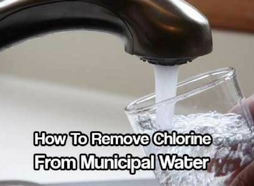 How To Remove Chlorine from Municipal Water — The most common way to remove the chlorine in the past was to simply let the water sit out and it was commonly believed that 24 hours, or overnight, was a sufficient amount of time to let it evaporate.