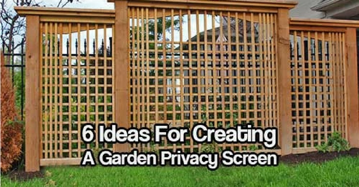6 Ideas For Creating A Garden Privacy Screen