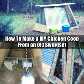 How To Make a DIY Chicken Coop From an Old Swingset