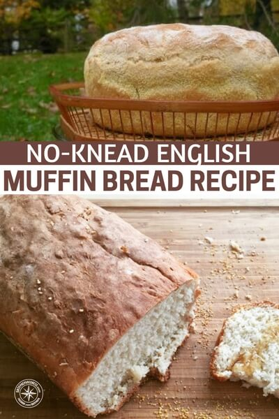 No-Knead English Muffin Bread Recipe - There is no need to worry about any of that with this recipe. If you like english muffins then you will LOVE this muffin bread recipe. You don't need any fancy mixing tools and you don't even have to knead the dough! Another great thing about this recipe is that there are no preservatives so munch away knowing it's all good for you!