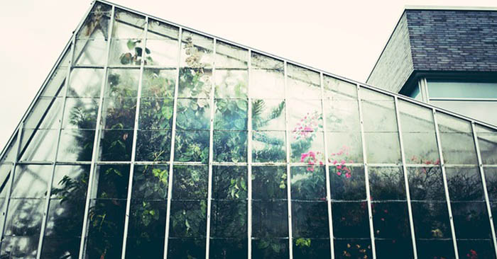 12 Great DIY Greenhouse Projects - You don't have to spend hundreds of dollars on greenhouses if you have time and a few things that you may have laying around the house. I love the bottle greenhouse. I may just have to build a small one and see how it fairs.