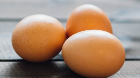 5 Awesome Methods to Preserve Eggs