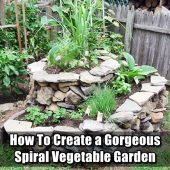 How To Create a Gorgeous Spiral Vegetable Garden