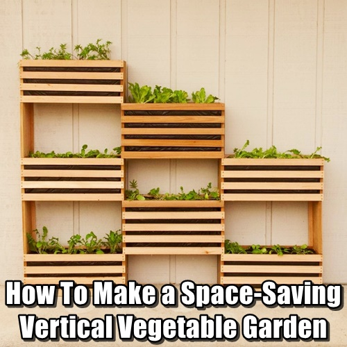 Creating Our First Vegetable Garden Advice Please: How To Make A Space-Saving Vertical Vegetable Garden