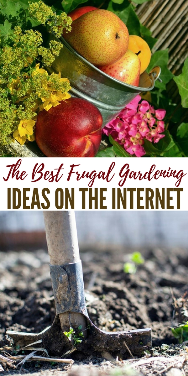 The Best Frugal Gardening Ideas on the Internet - This is a round-up of some of the best frugal gardening ideas on the internet to help you get started growing your own food no matter what your budget is.