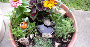How To Build A Mini Water Garden Oasis In 3 Different Styles - As many of you know I try to have a wide mix of DIY projects that not only help you become more self reliant and prepared for hard times but also I like to find awesome projects like this one that can test you creative skills and save you a lot of money by building your own.