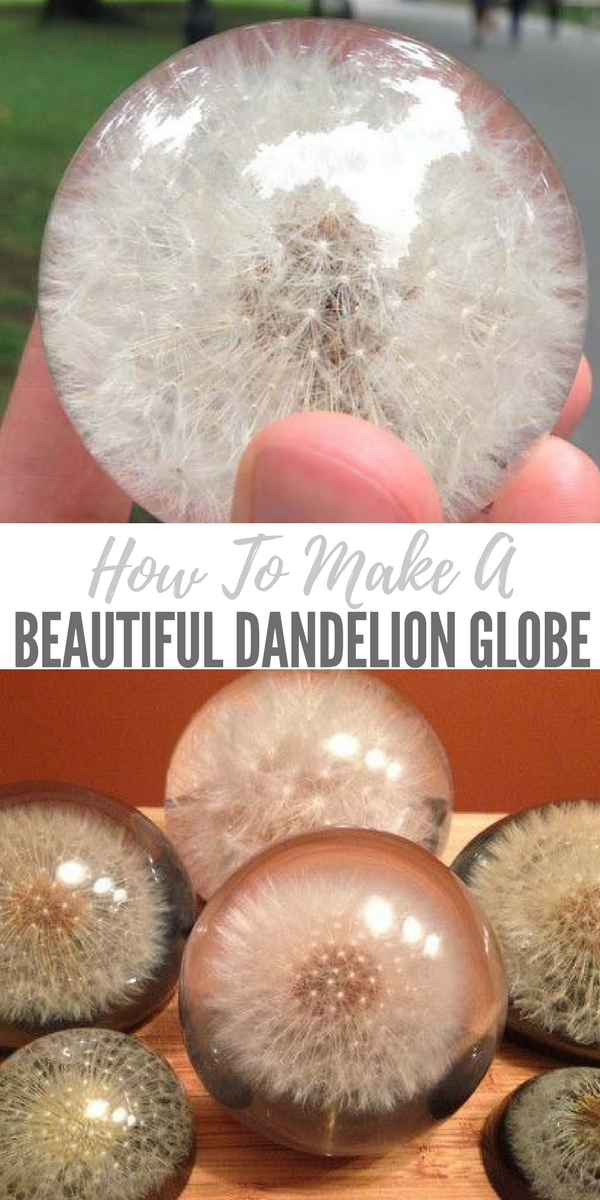 A dandelion paperweight globe is an incredible craft that will preserve a dandelion's beauty, and all those memories of childhood fun, for all eternity!