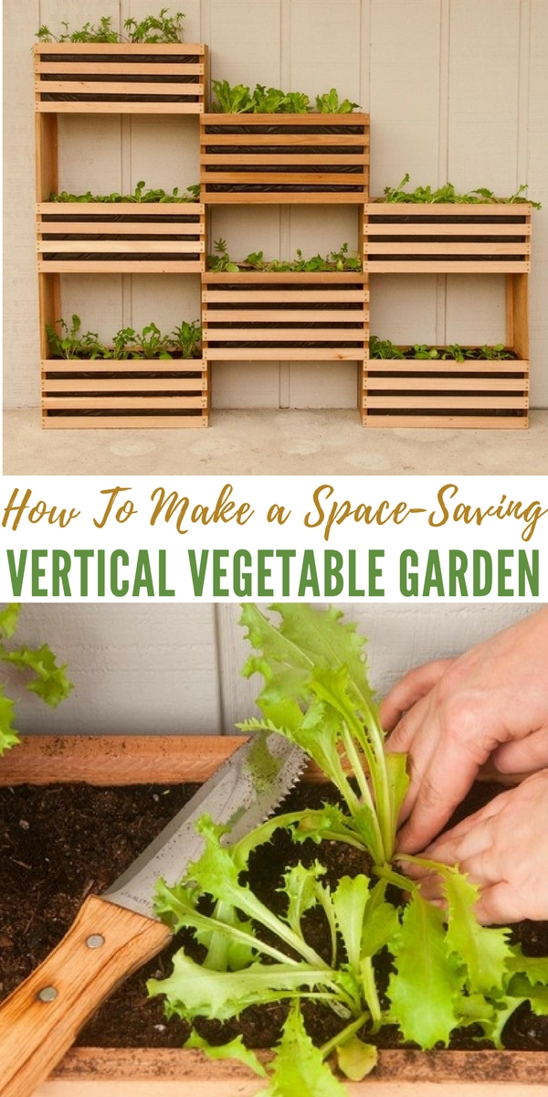How to make a space saving vertical vegetable garden for Creating a vegetable garden