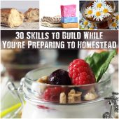 30 Skills to Build While You're Preparing to Homestead