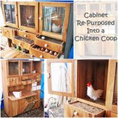 Cabinet Re-Purposed Into a Chicken Coop - The compartmentalized unit has drawers for soil, straw, corn feed, and egg storage, as well as tiny curtains for the hens, since they prefer to lay eggs in the dark. Chickens need space to roam, so the unit should be placed in a backyard to give them access to the outdoors.