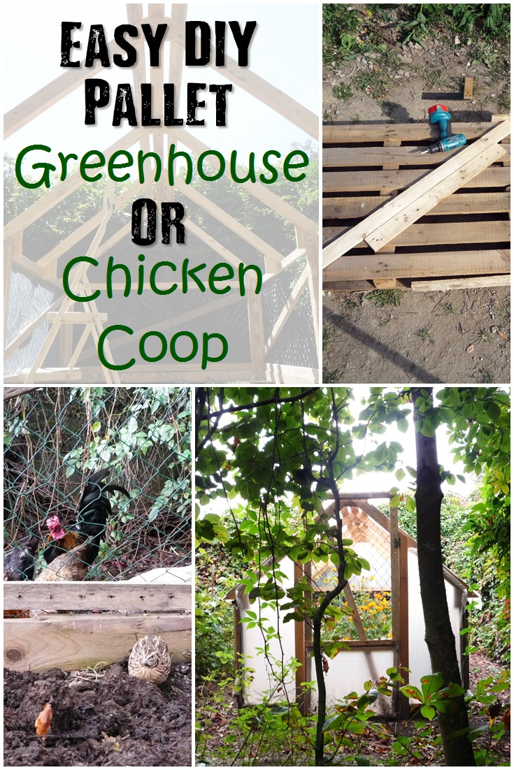 20 Awesome DIY Chicken Coop Plans For Homesteaders  Diy Chicken Coop Greenhouse