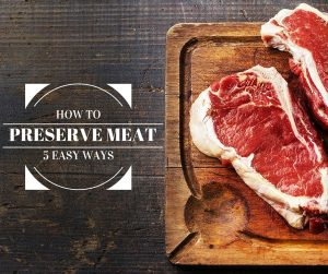 How to Preserve Meat 5 Easy Ways