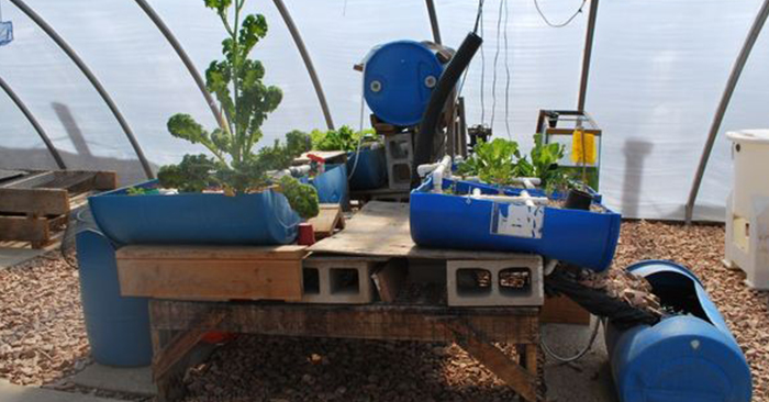 How To Build a Vertical Aquaponic Veggie & Fish Farm For Small Yards & Houses - If you are limited in space, this is for you! This is awesome. Even an apartment prepper could do this.