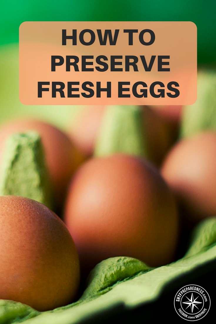 Four Simple Methods To Preserve Eggs For The Long Term ...