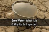 Grey Water: What It Is and Why It's So Important - If you want to survive as long as possible, then you don't want to waste a single drop of water. So even if it's too dirty to drink, you should at least use it for cleaning, flushing toilets, or watering your garden. This type of water is known as grey water, and it's very important.