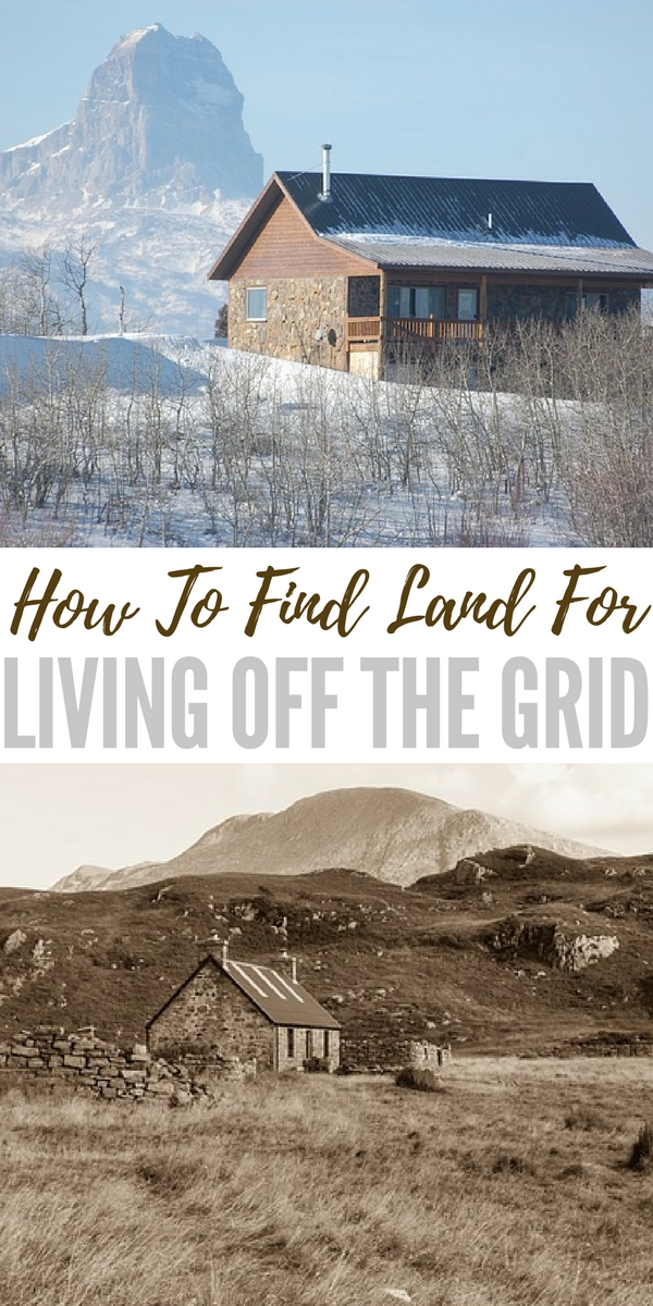 i want to learn how to live off the land