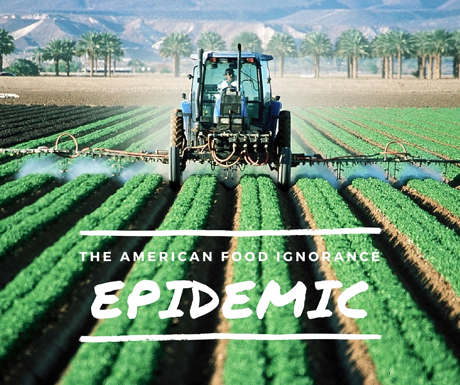 The American Food Ignorance Epidemic - There is a growing movement, just under the surface, of people who have decided to take back control over the source and processing of the food they put in their kids' mouths. Do a Google search on students trying to identify vegetables in a large inner city school. It might break your heart to see them absolutely clueless about what an eggplant looks like, let alone that it's food.