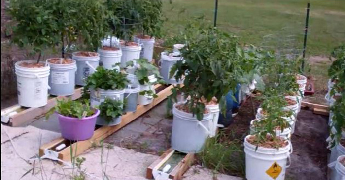 How to Build a Self Watering Rain Gutter Grow System - Watering even a small garden can be a chore, some of us just forget or literally have a hose ban stopping us from doing so in the height of summer. This awesome DIY project utilizes the use of rain gutters and 5 gallon buckets to help your garden grow.