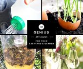 16 Genius DIY Hacks for Your Backyard & Garden - If you long for a more beautiful backyard space or bountiful garden, but lack the funds to hire a landscape designer, check out these DIY tips and tricks to improve your outdoor space with a frugal budget in mind.