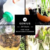 16 Genius DIY Hacks for Your Backyard & Garden