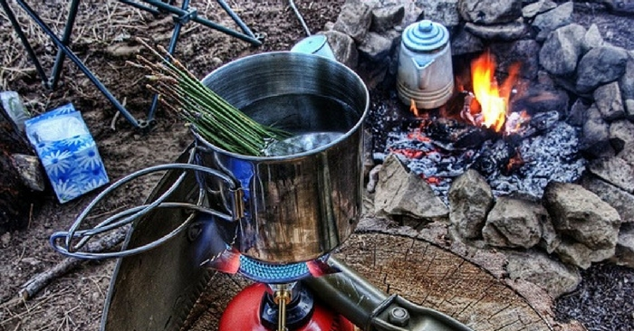 4 Wild Teas Every Survivalist Should Know — These teas can give you much needed nutrients and boost morale if you find your self lost in the woods