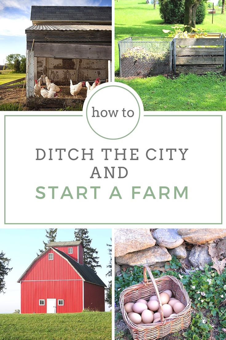 How to ditch the city and start a farm shtf prepping for How to start homesteading today