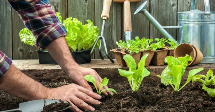 How to Make Money from Gardening and Urban Farming — Independence. Freedom. Self Reliance. Prepared. These are just some of the many benefits to being your own boss by working for yourself from your home based business.