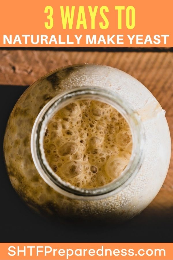 """Call me """"green, frugal, cheap, or just smart"""". I do not buy store bought yeast anymore. I am cheap and I admit it! I actually prefer to make my own because I know what's in it and I save a ton of money over the years!"""