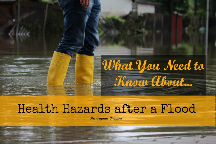 What You Need to Know About Health Hazards After a Flood - After the flood waters recede and people go about the business of cleaning up, many think that they've already faced the worst part of the disaster. There are several diseases and myriad other health concerns that go hand in hand with freshwater flooding, and no matter where you live there are risks that can cost you your life that have nothing to do with drowning.