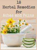 18 Herbal Remedies for Aches and Pains - In a SHTF situation, having access to any kind of supply of modern medicine will be a very rare thing. Humanity will be forced to go back to herbal treatments for their ailments.