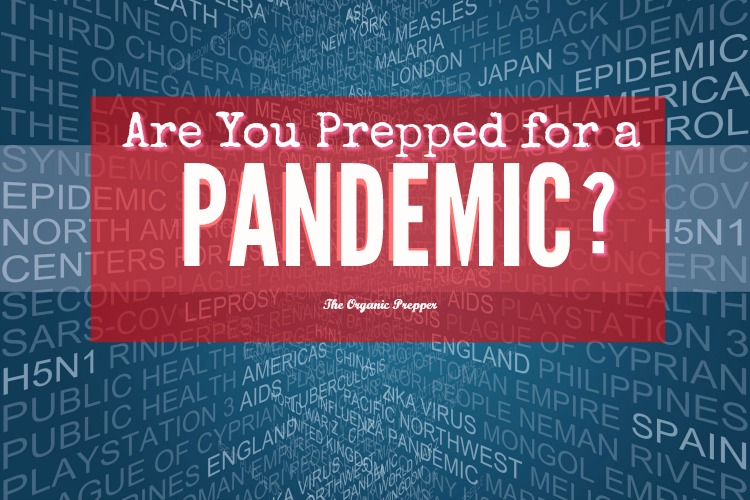 """Are You Prepped for a Pandemic? - One of the scariest and most difficult things to prep for is a pandemic. There is usually a little bit of warning before an outbreak becomes severe enough to warrant the title """"pandemic"""". This means that the judicious prepper needs to pay close attention when new viruses begin to be mentioned."""