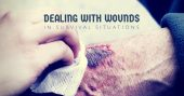 Dealing With Wounds In Survival Situations - Most wounds are treated as if they're no big deal in the civilized world. When your supplies are limited, the whole game changes. A little cut left unattended can quickly get infected and spread when in a disaster situation.