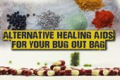 Alternative Healing Aids For Your Bug Out Bag - If you plan to customize your first aid kit, you should look for alternative healing aids. The type you can make yourself, in the comfort of your home. This would be a good practice for when modern medicine isn't available and you would be forced to improvise in order to survive.