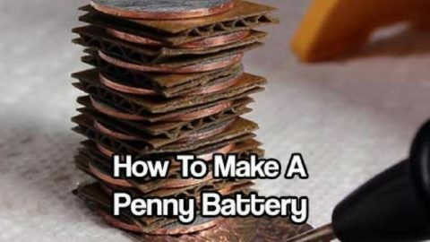 How To Make a Penny Battery