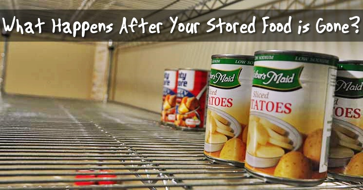 What Happens After Your Stored Food is Gone? - When your ready-made or packaged foods and stockpiles of hard red winter wheat are gone, you will have to have a plan for keeping your family fed. What would you do?