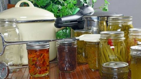 50+ Survival Canning Recipes