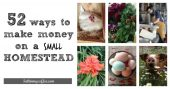 52 Ways to Make Money on a SMALL Homestead - This list was designed specifically for those with limited acreage, so homesteaders on any level can take advantage of some of the tips listed. I particularly like the tips on making money outside of the growing season, since things are wrapping up soon (if not already!). Time for some new projects!