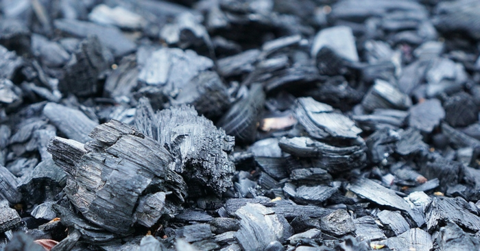 60+ Activated Charcoal Remedies — Activated charcoal is worth every penny spent on it. Activated charcoal has so many wonderful uses around the home, garden and body!