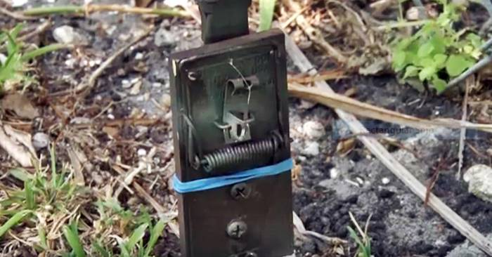 DIY Tripwire Bang Alarm - Alarms can come in a huge variety of styles, many with a hefty price tag. Sometimes, simplicity and portability is what you need. Whether for use when camping, keeping an opportunist from sneaking up on you when in the wilderness, or just scaring away a few pests, consider the decidedly low-tech tripwire bang alarm.