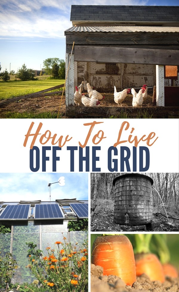 how to live off the grid with a family