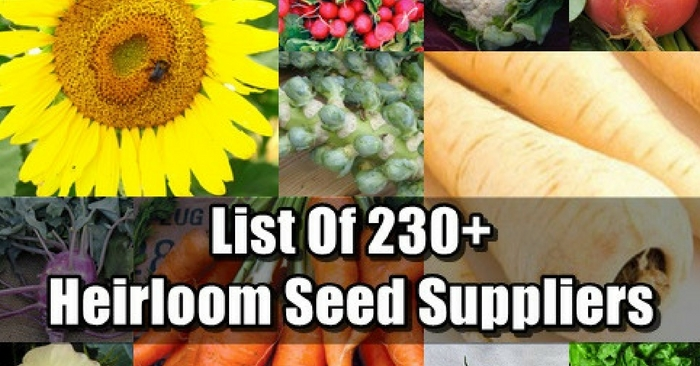 List Of 230+ Heirloom Seed Suppliers — Winter is here and that means cold weather and no growing for a lot of us. On the flip side, seed companies have sales on and thats whats happening right now. I have got amazing deals with some of these websites I am sharing with you today.